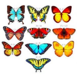 Набор бабочек на скотче для украшения стен, 10 штук